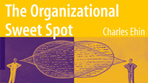 http://www.unmanagement.com/wp-content/uploads/2013/06/organizationalSweetSpot_widget_v01.jpg